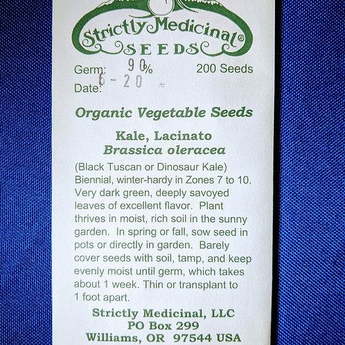 Kale, Lacinato (Brassica oleracea) seeds, organic