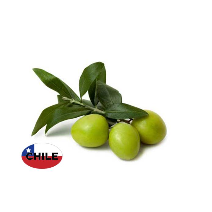 Chilean Arbosana EVOO
