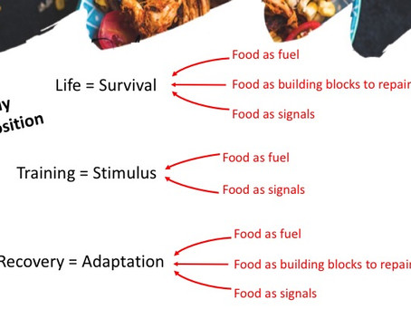 What Does Food Do? Life, Training and Recovery