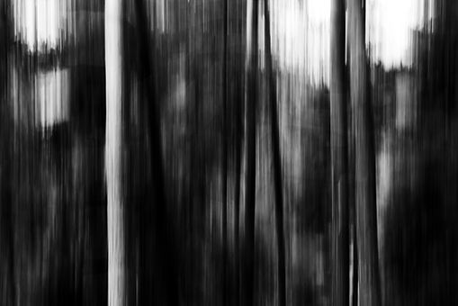 black and white .-1-2.jpg