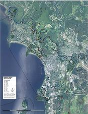 B Mammals Map 2020.jpeg