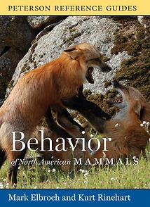 behav n am mammals.jpg