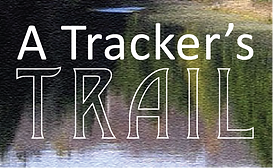 trackerstrail logo.png