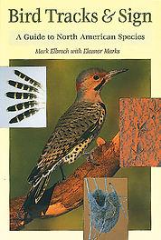 birdtracks.jpg