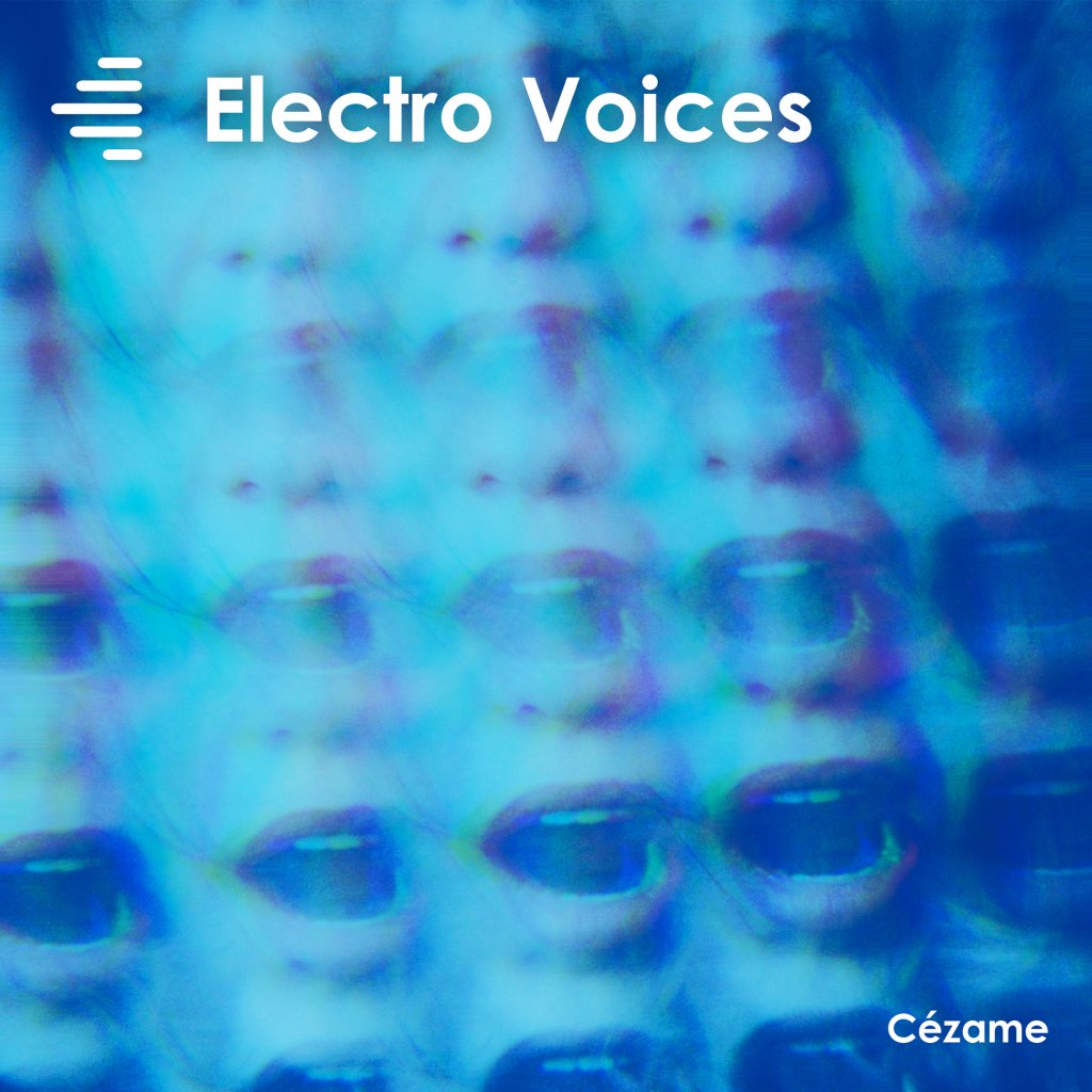 Vermair_ElectroVoices