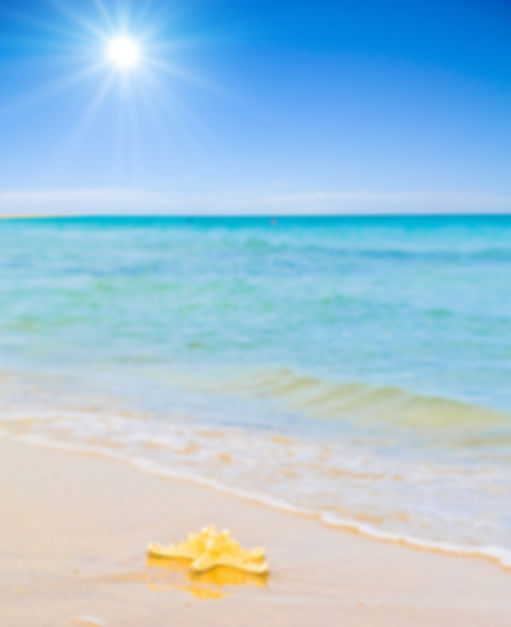 Enjoy a vacation in Panama City Beach, FL