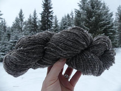 Deep dark brown romeldale x merino, and creamy white rambouillet x merino.jpg