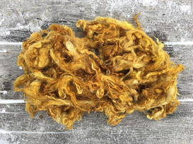 #wovember prompt, number 4_  COLOUR.jpgBFL x Gotland woolen locks dyed with marigold blossoms, lightly frosted, from a friend's greenhouse.jpg