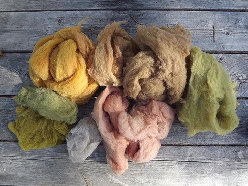 #flashbackfriday to a photo & notes on my first experiments dyeing with hawthorn - what the socks were spun and knit from, (borrowed from ov