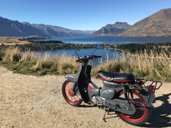 Queenstown Signs Scooter