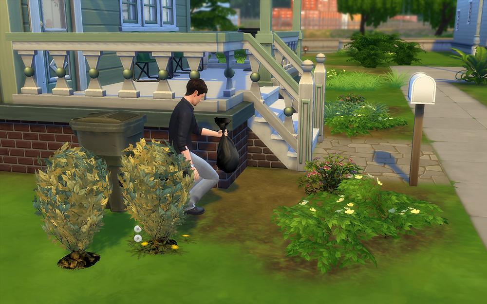 Disposing the Dead Plants