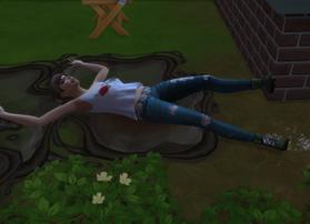 Tara Slipped in the Mud