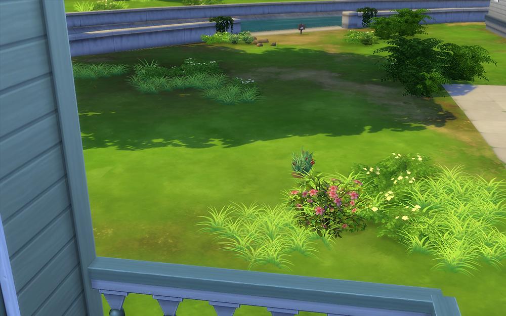 My Lawn