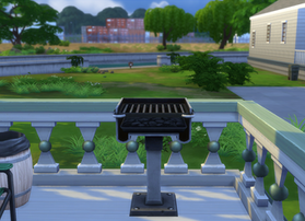 Bought a BBQ!