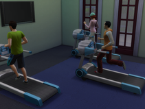 A Trip to the Gym