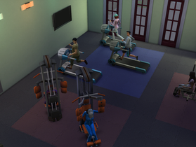Spent a Few Hours at the Gym