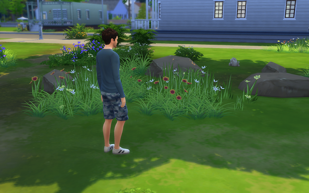 Enjoying the Outdoors