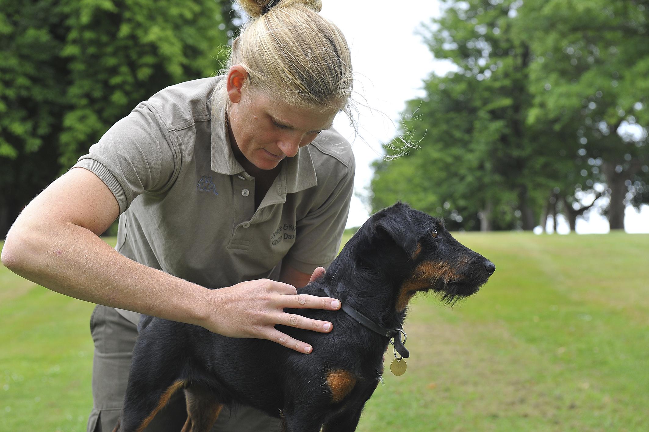 Kiropraktik hund 13_150dpi