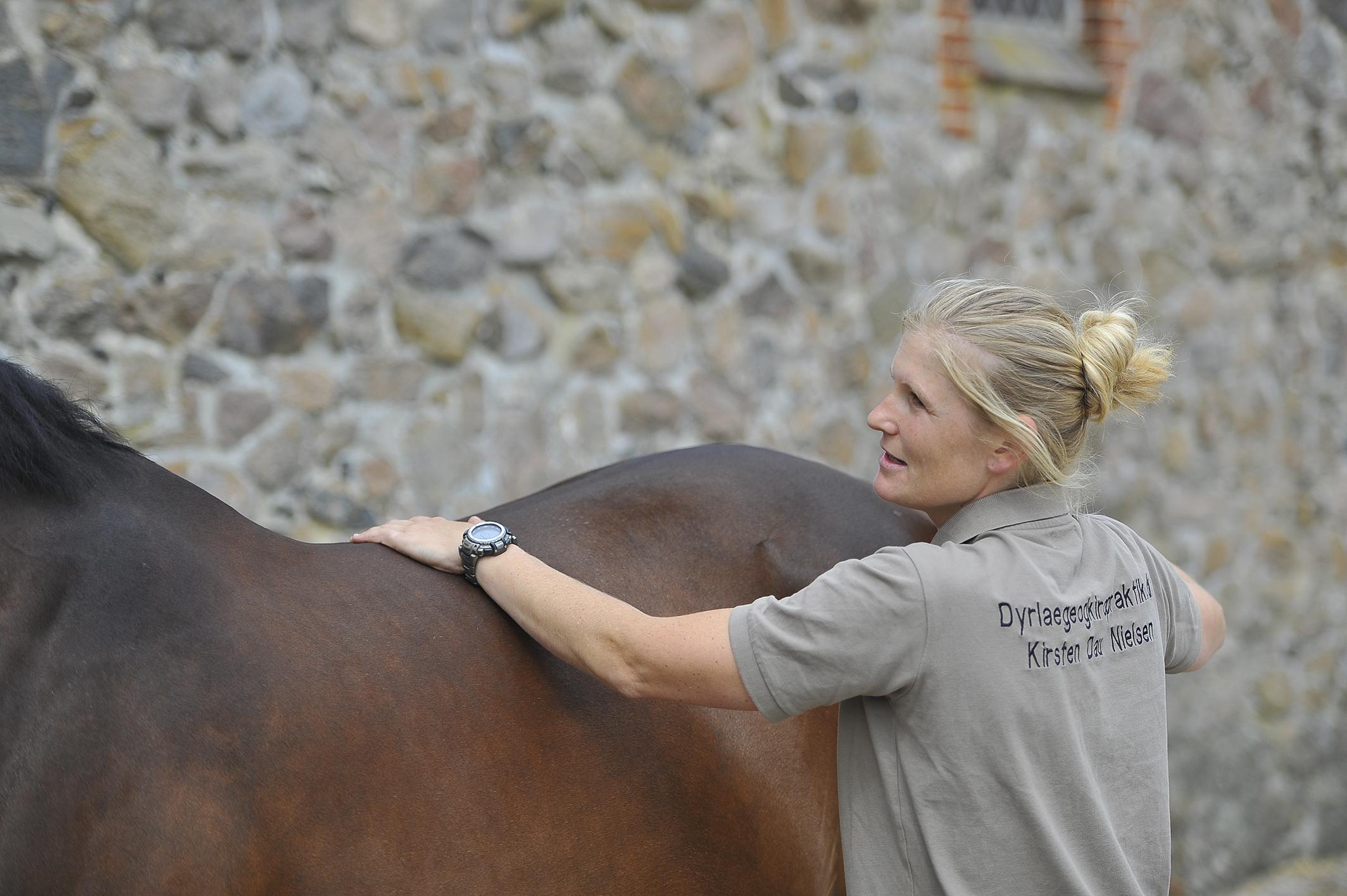 Kiropraktik hest 14_150dpi