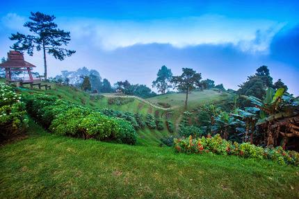 Beauty @ Huai Nam Dang National Park
