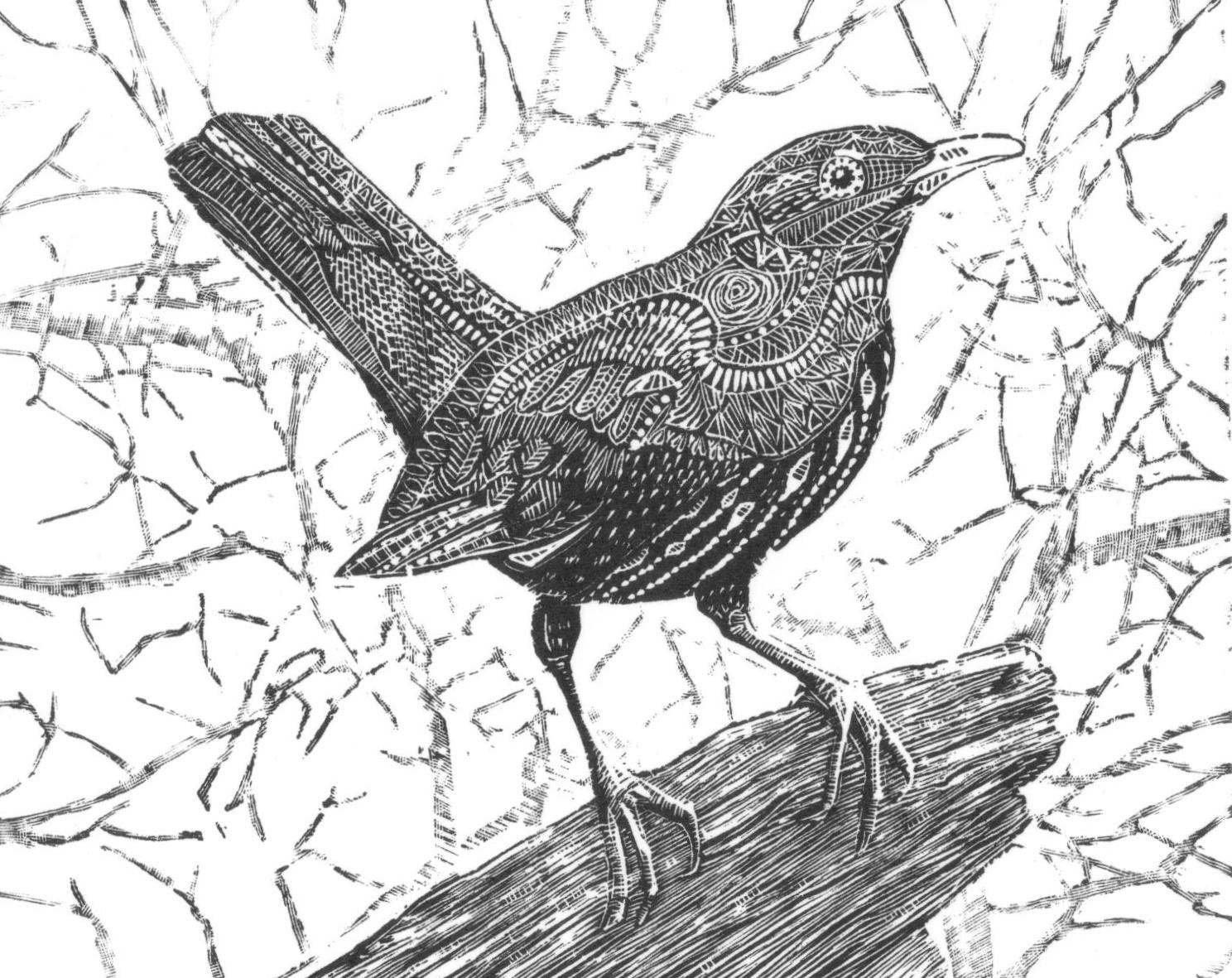 Bonnie Blackbird