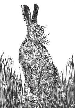 hare-style