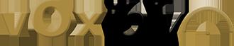 Voxibly logo stor.png