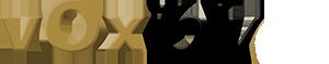 Voxibly logo preloader.png