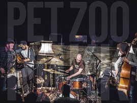 New Release: Pet Zoo March 3!