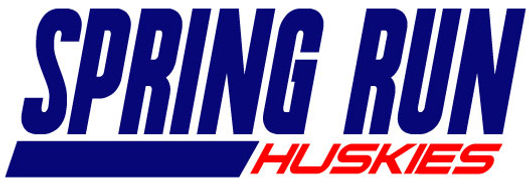 SPRING-RUN-Baseball-Logo2.jpg