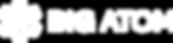 Big Atom Logo