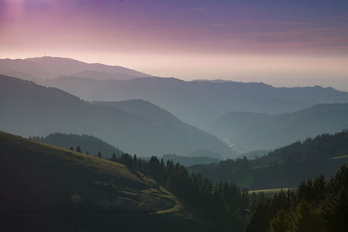 black-forest-forest-mountains-45987.jpg