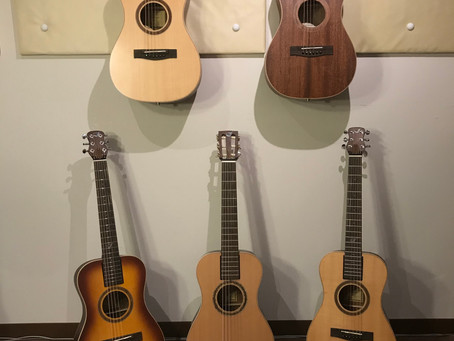 トラベルバッグギター   ラインナップご紹介パート1