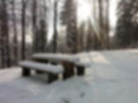 snow-439514_960_720.jpg