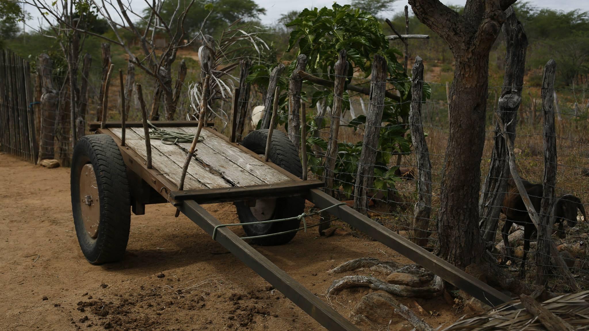 Carro de Boi no Congo
