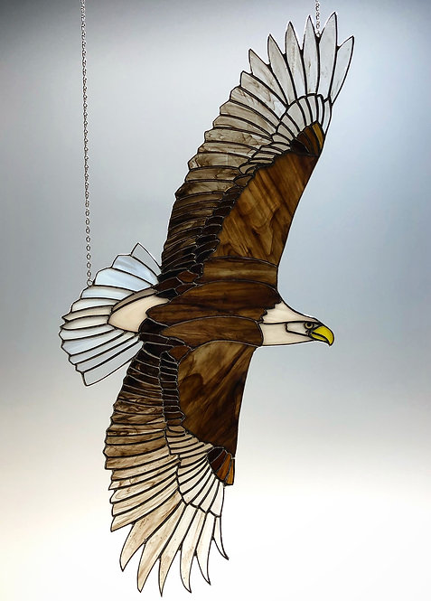 Bald Eagle in Flight - Ready to Ship