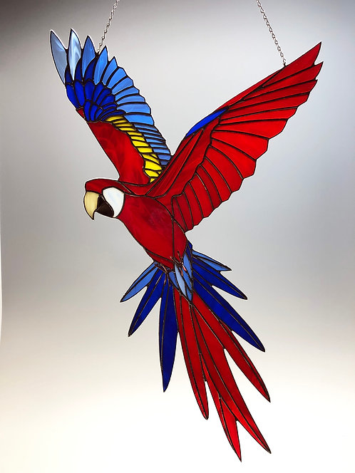 Scarlet Macaw in Flight - Ready to Ship