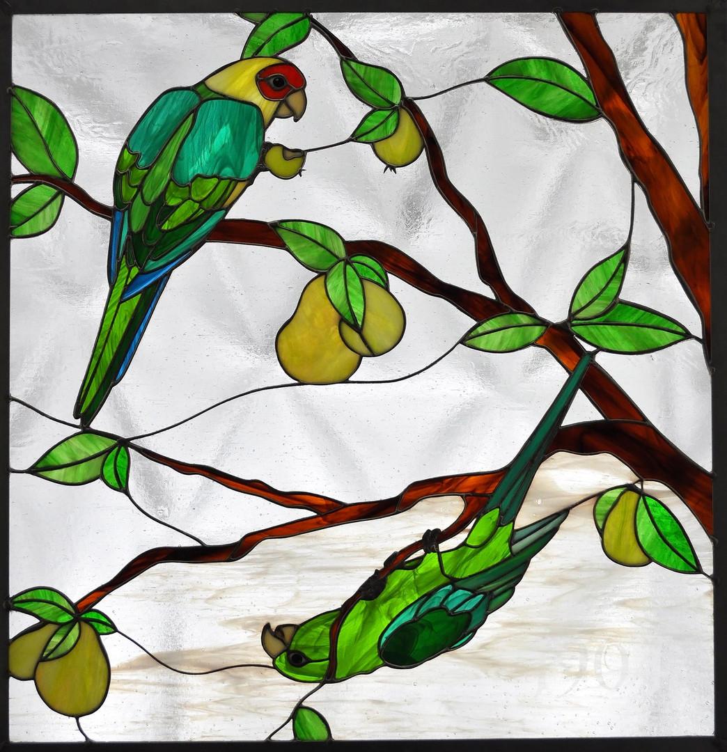 Deadly Sins of the Carolina Parakeet:  Gluttony