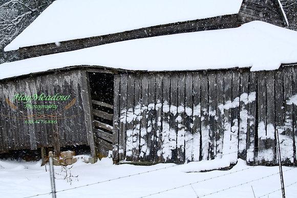 Frozen Barn