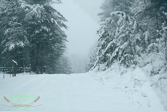 Snowed Drive