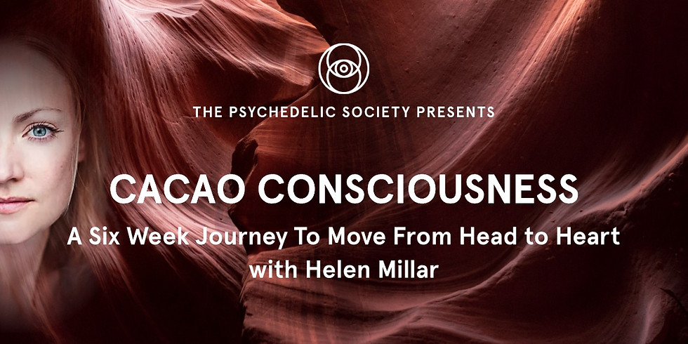 Cacao Consciousness: a 6 week journey to move from head to Heart