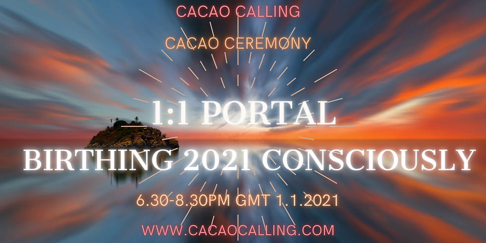 1:1 Portal Cacao Ceremony: Birthing 2021 Consciously