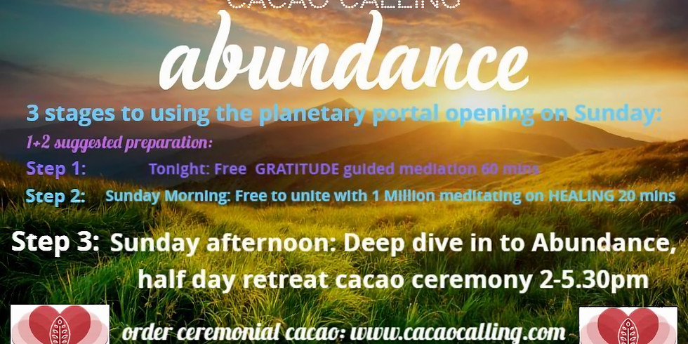 Deep dive into Abundance. Half day retreat with cacao and magic.