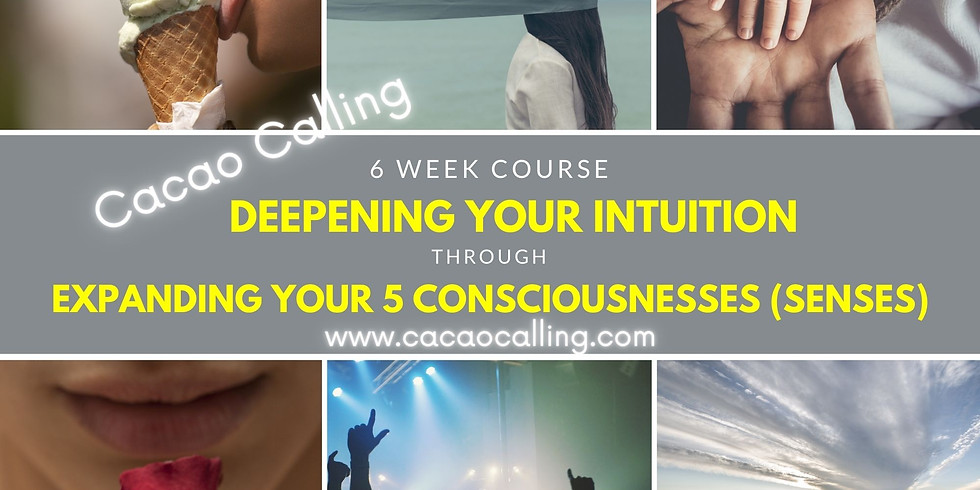6 week course: Strengthening Your Intuition: Expanding Consciousness through the senses