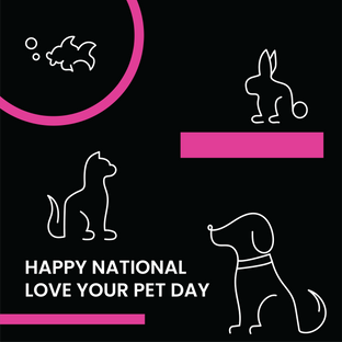 NationalLoveYourPetDay.png