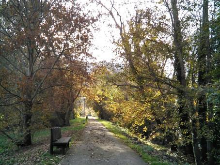 Arboretum de los Picos de Europa