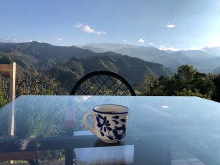 ¿Por qué me enamoré de Colombia?