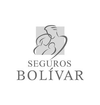Grupo bolivar.jpg