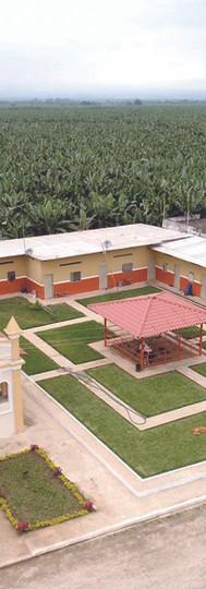 Housing Palmar