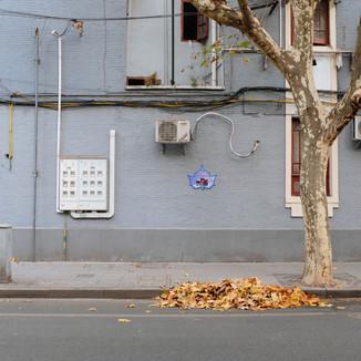 Shanghai Photowalks